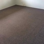 Moranbah-Clean-Lounge-Carpet