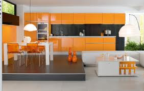 Swifty clean photo black and orange kitchen